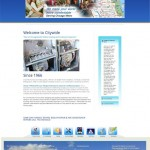 Business Services Websites design portfolio Pearl Like Technology